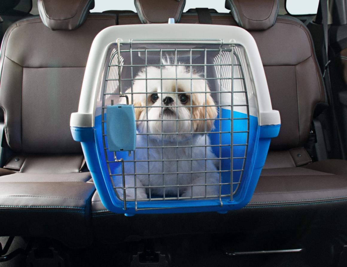 Casinha de cachorro para carro