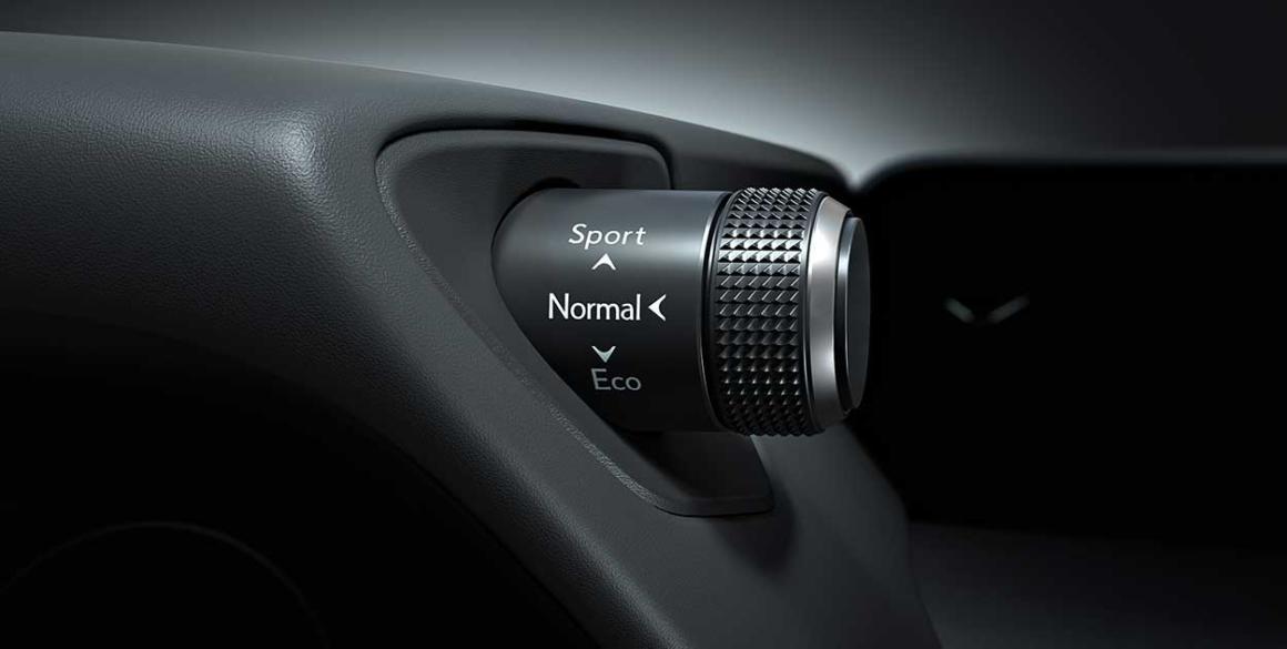 Lexus-250-detalhe